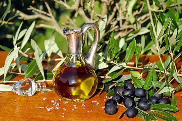olivenöl und olivenzweige
